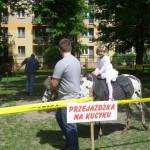 Piknik Rodzinny (17)