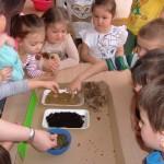 Zajęcia o glebie (1)