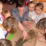 Zajęcia o glebie (2)