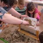 Zajęcia o glebie (4)