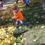 Grabienie liści (2)