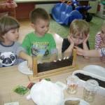 Tworzymy zielony kącik (2)
