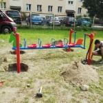 Nowe urządzenie w ogrodzie (2)