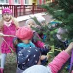 Dzień Drzewa (5)
