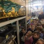 Wycieczka do Mini Zoo (1)