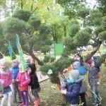 Święto drzewa (9)
